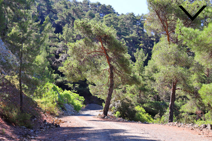 troodos hiking tours